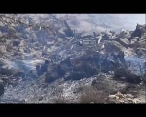 مجزرة العدوان السعودي الأمريكي -وادي المغسل -  مديرية المجز - محافظة صعدة  (8)