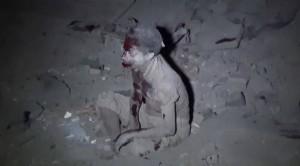 June7_GeneralCommandArmedForces_Sanaa