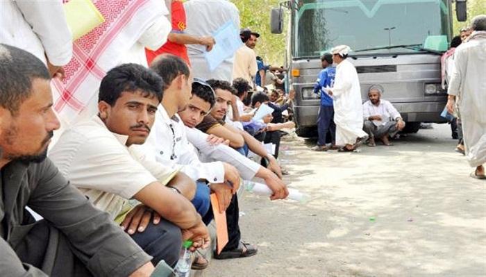 نائب وزير شؤون المغتربين: السعودية رحلت مليون مغترب يمني منذ بدء العدوان!